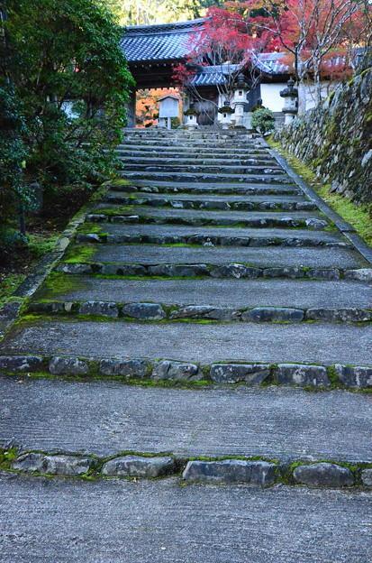 Photos: 山門への石段