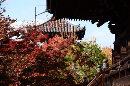 塔を蔽う紅葉