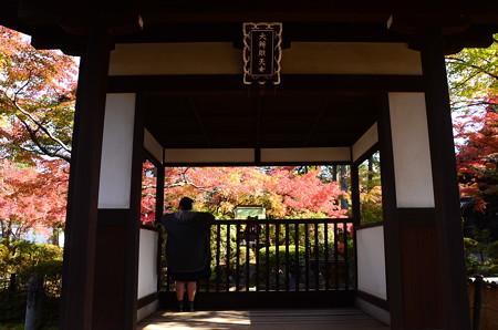 赤崎弁財天の紅葉