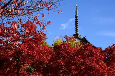 紅葉に浮かぶ塔