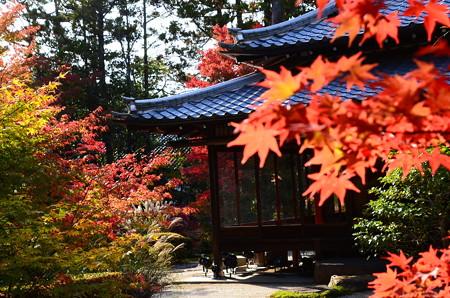 書院を彩る紅葉