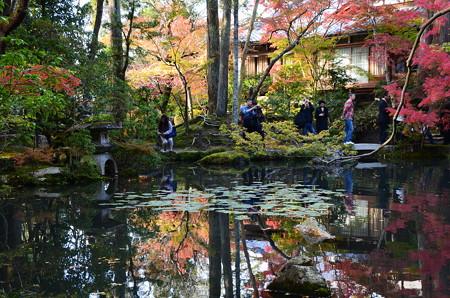 池に映る秋