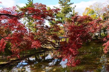 東屋のある秋景