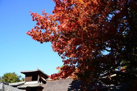 嘯月楼を飾る紅葉