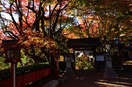松ヶ崎大黒天の秋景