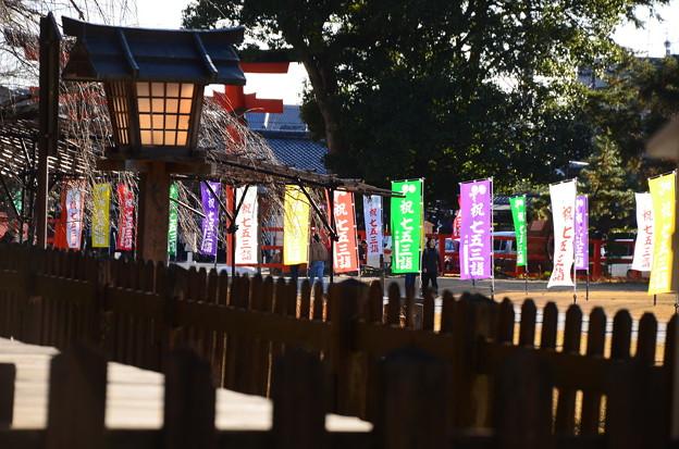 七五三の上賀茂神社