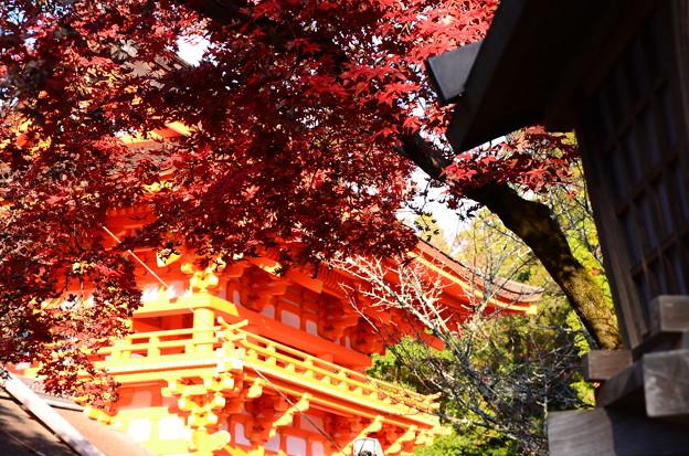 楼門と紅葉