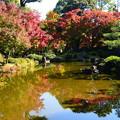 城南宮の紅葉