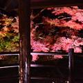 Photos: 四阿越しの紅葉
