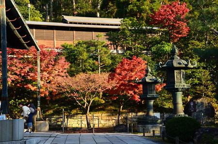 紅葉の大谷祖廟