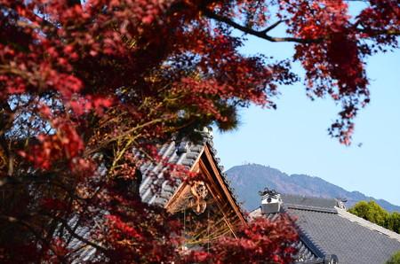 紅葉の中の比叡山