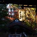 梨木神社の紅葉