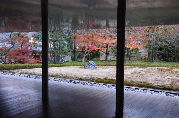 平等院の紅葉景色