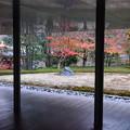 Photos: 平等院の紅葉景色