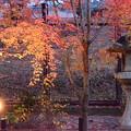 Photos: 夕暮れの宇治上神社