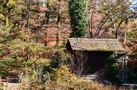 初冬の水車小屋