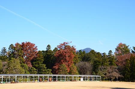紅葉の奥の比叡山
