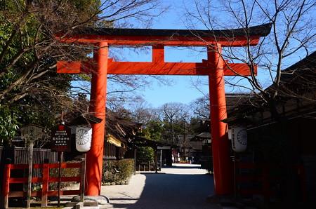 立春の下鴨神社