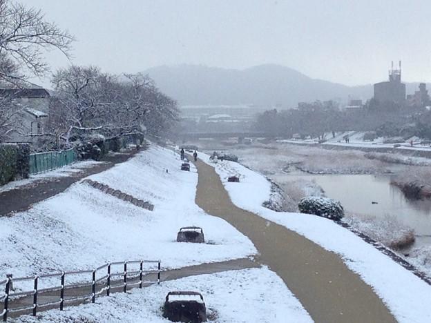 賀茂川雪景色