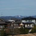 Photos: 北山の雪