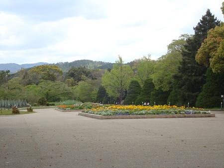 無人の府立植物園