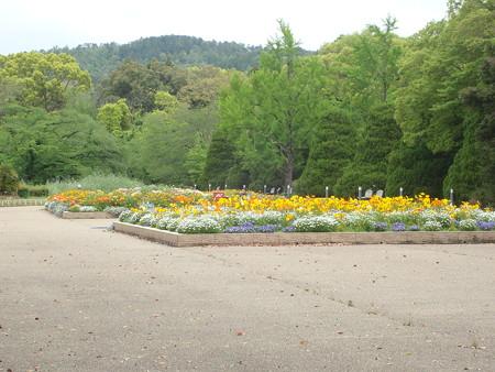 休園中の京都府立植物園