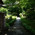 山門から庭園を覗いて