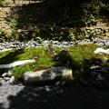 Photos: 石のモニュメント?