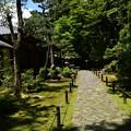 初夏の法然院