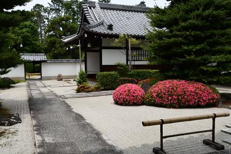 皐月咲く大光明寺