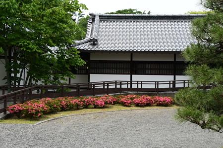 皐月咲く閑院宮邸跡
