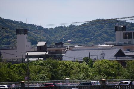 葵橋から見える塔