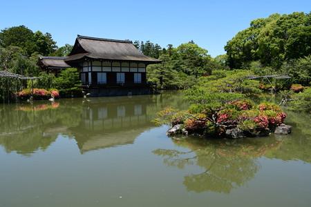 皐月咲く栖凰池