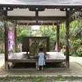 Photos: 大豊神社の七夕飾り