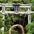 Photos: 北白川天神宮の茅の輪