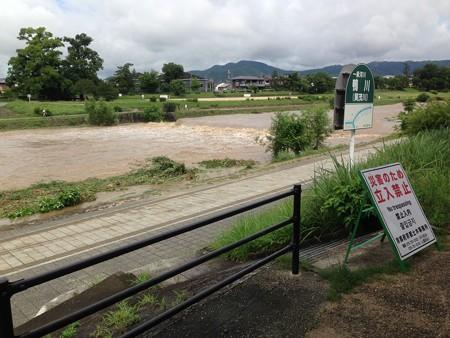 今朝の賀茂川