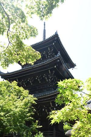 緑の中の三重塔
