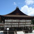 夏空の下鴨神社