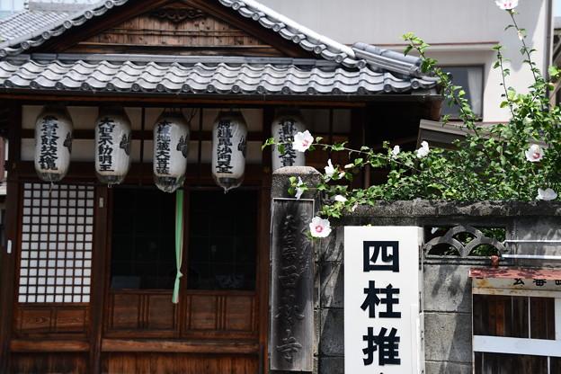 木槿地蔵西林寺