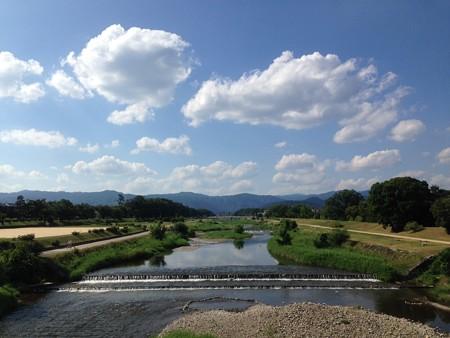 猛暑日の賀茂川