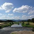 Photos: 猛暑日の賀茂川