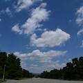 Photos: 夏空の御所