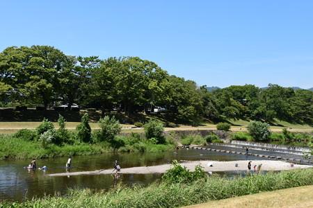 酷暑日の賀茂川