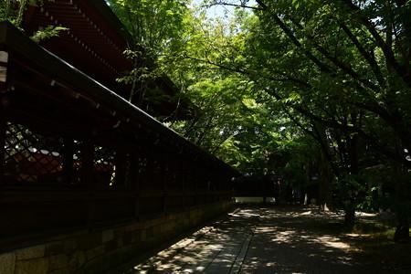 真夏の上御霊神社