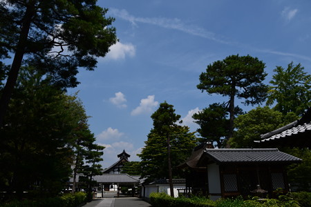 夏空の相国寺
