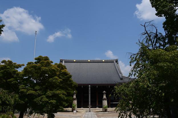 夏空の妙顕寺