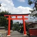 Photos: 夏空の下鴨神社