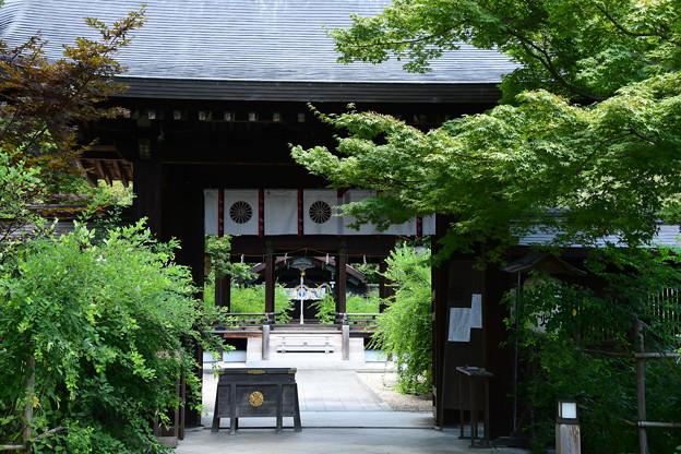 晩夏の梨木神社