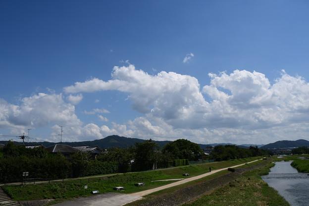 まだ夏空の賀茂川