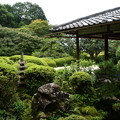Photos: 9月初めの詩仙堂庭園